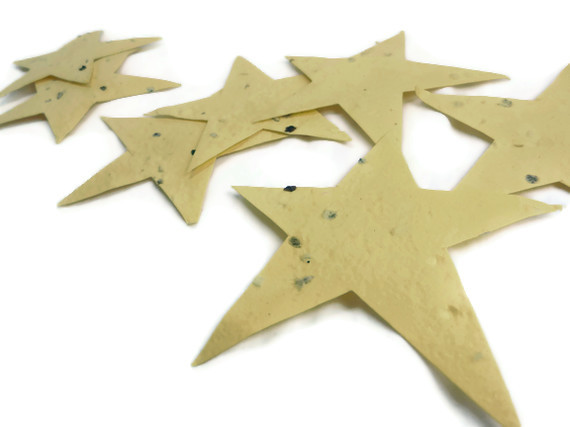 Seed Paper Star Favors